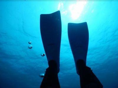那覇観光ついでダイビング おすすめショップ場所観光客少人数貸切気軽に楽しめる
