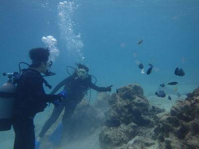 那覇観光ついでダイビング オススメショップ場所観光客少人数貸切気軽に楽しめる