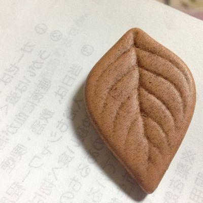 山梨手巻きタバコ販売店RAWローラーケース葉っぱ保湿グッズ.jpg