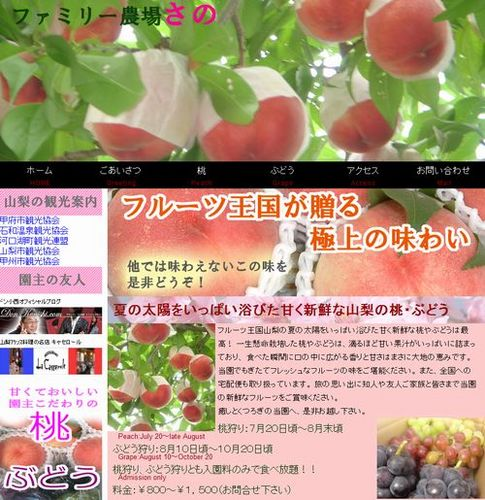 神奈川から近い山梨の人気桃狩り食べ放題時間無制限