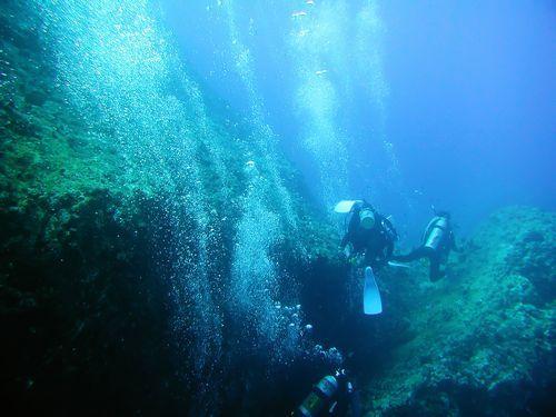 秋のマリンスポーツ、ダイビングin沖縄少人数貸し切りを満喫