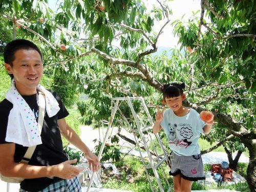 笛吹市石和温泉駅周辺御坂町バスおすすめ人気桃狩り食べ放題農園