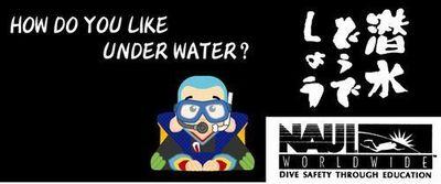 個人団体貸切簡単に取れる那覇ダイビングショップダイビングライセンス取得冬おすすめ