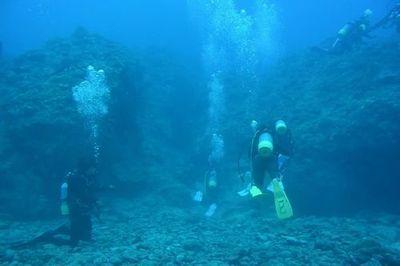 沖縄那覇市観光スキューバダイビングおすすめ初めてでも楽しめる家族貸切できる良心的なダイビングショップ